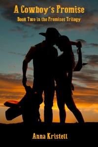 Cowboy's Promise-flat